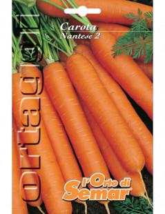 Semi di carota Nantese 2 in...