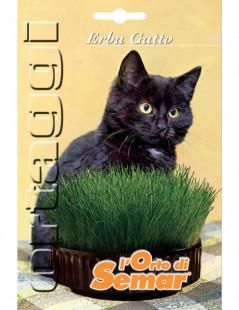 Semi di erba gatto in busta...
