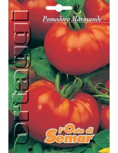 Semi di pomodoro Marmande...