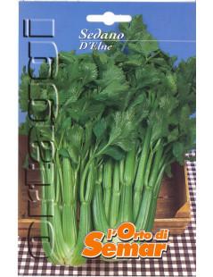 Elne Celery Super Packet