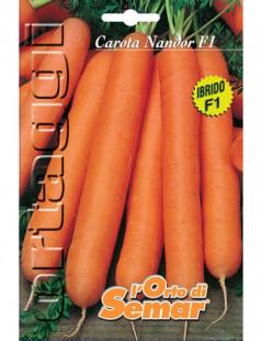 Semi di carota Nandor in...