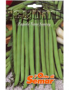 Semi di fagiolo Sunray Nano...