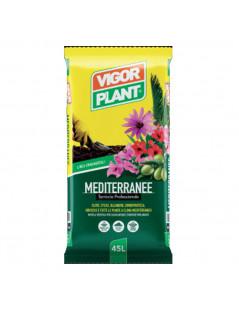 Terriccio per piante...