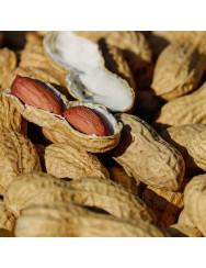 Semi di arachide