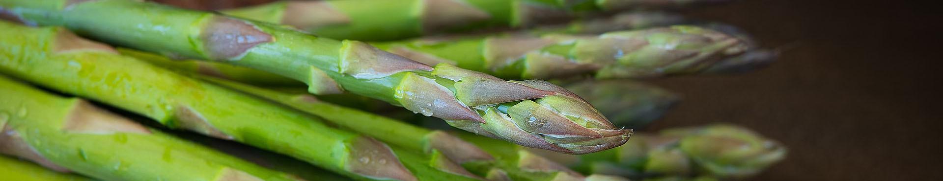 Semi di asparago