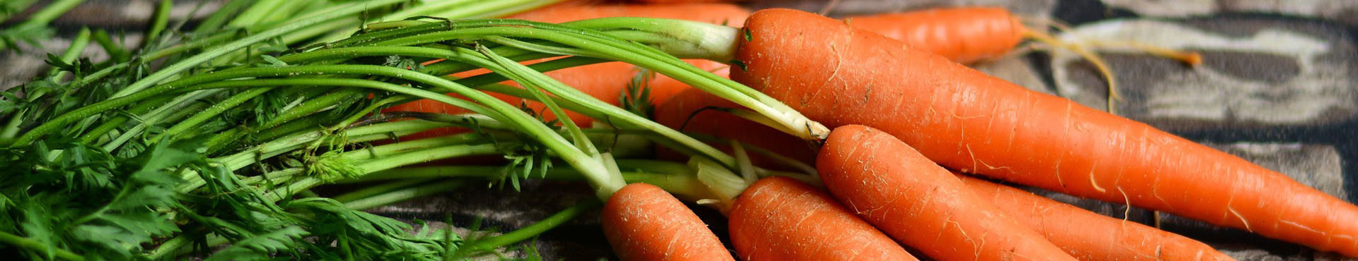 Semi di carota