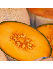 Semi di melone