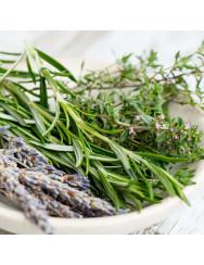 Semi per erbe aromatiche