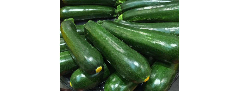 La coltivazione delle zucchine